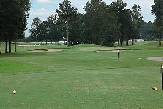 Black Bear Golf Course Reviews Myrtle Beach