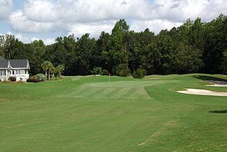 Lions Paw At Ocean Ridge Plantation Myrtle Beach Golf Course